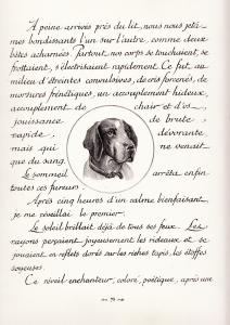 GAMIANI , [S.I., n.p., n.d. c.1948]._0029