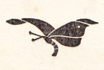 Camille et Moi Carrington Van Maele 1904_0004